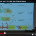 Terminator Genes and GURT – Biological Restrictions Management
