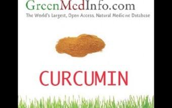 Curcumin: Promising Anti-Cancer Compound Revealed