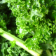 How Kale Prevents Glaucoma