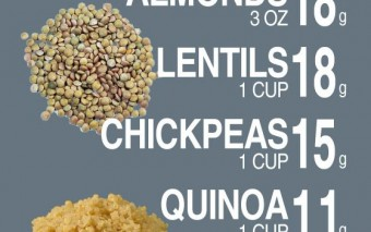 8 Great Sources of Plant Based Protein