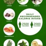The Best Zero Calorie Foods (Infographic)