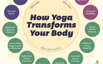 How Yoga Transforms Your Body (Infographic)