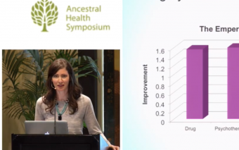 Mood and Anxiety in the Perinatal Patient: The Inflammatory Model — Kelly Brogan, M.D. (AHS14)