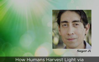 How Humans Harvest Light via Water, Melanin and Chlorophyll